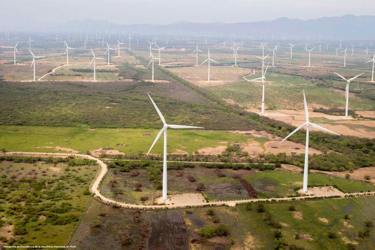 Estudios Ambientales para un Parque Eólico